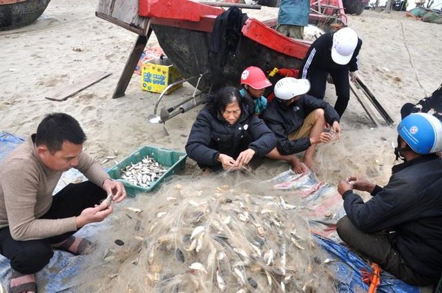 Xông biển đầu năm, mỗi ngày thu nhập cả triệu đồng - 4