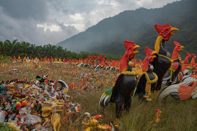Ngôi chùa khách đến thăm dâng toàn tượng gà, chất đống thành nghĩa địa - 1