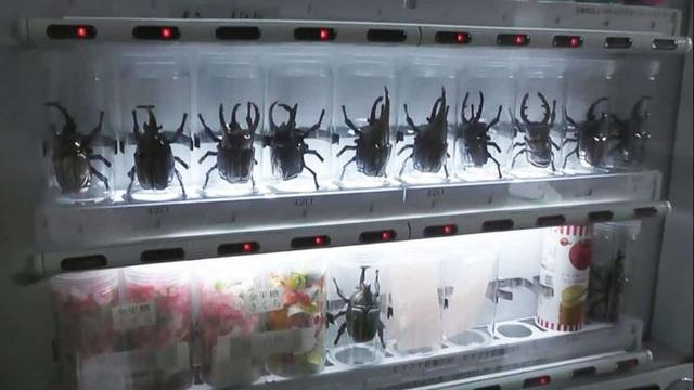 Những thứ kỳ lạ có thể xuất hiện trong máy bán hàng tự động tại Nhật - 1