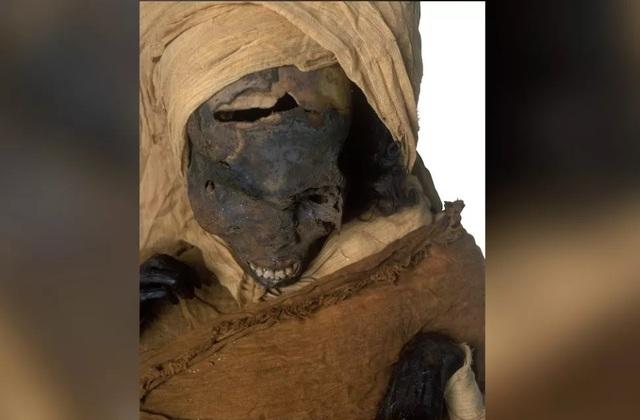 Xác ướp hé lộ pharaoh Ai Cập bị xử tử ngay trên chiến trường - 2