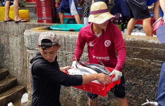 Khánh Hòa: Ngư dân trúng đậm lộc biển, thu về 100-200 triệu đồng đầu xuân - 3