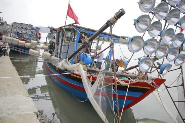 Ngư dân xứ Nghệ kiếm tiền triệu mỗi ngày, nhờ được mùa cá trích - 1