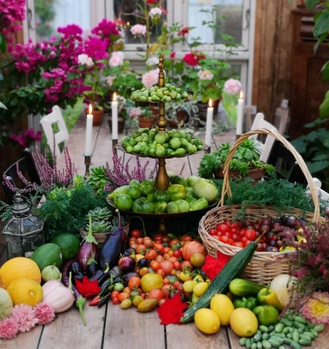 Ngắm mãi không chán vườn rau đủ loại cây trái của chàng trai bỏ phố về quê - 6