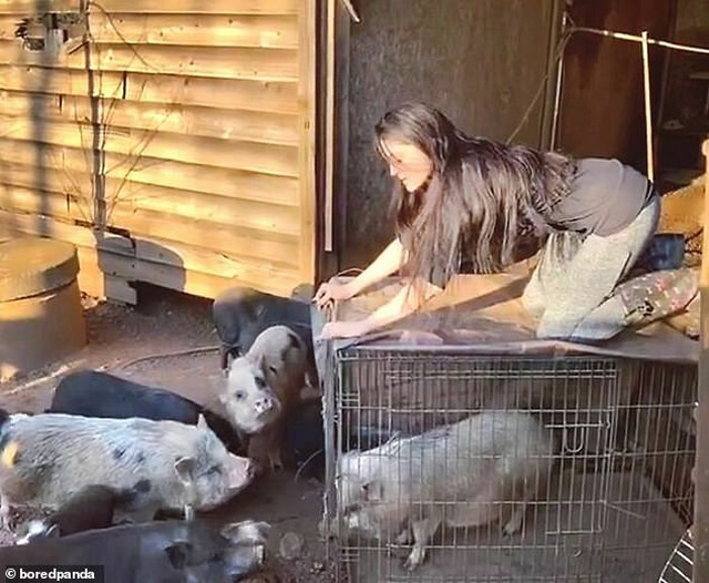Cô gái xinh đẹp chi hơn 1 tỷ đồng để giải cứu và chăm sóc 200 vật nuôi - 4