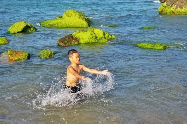 Mùa rêu xanh tại Rạn Nam Ô Đà Nẵng hút du khách check-in đầu năm - 5