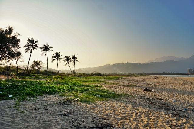 Mùa rêu xanh tại Rạn Nam Ô Đà Nẵng hút du khách check-in đầu năm - 7