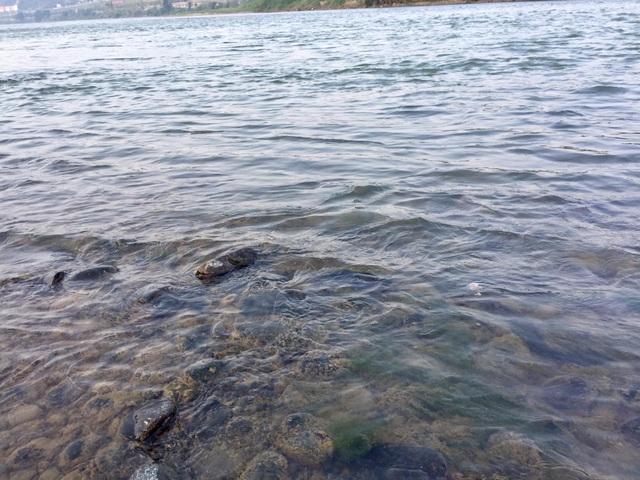 Nước sông Hồng bất ngờ đổi màu trong xanh như ngọc - 5