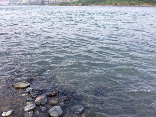 Nước sông Hồng bất ngờ đổi màu trong xanh như ngọc - 8