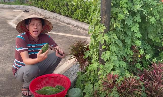 Bị chê bai ăn mặc tuềnh toàng quay clip, Hoài Linh diện vest đi nhổ cỏ - 3
