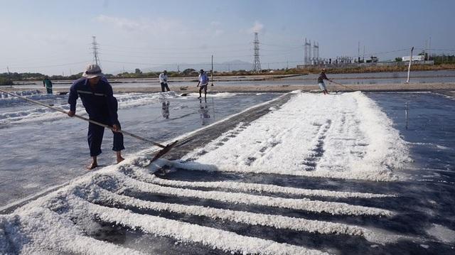 Cận cảnh nghề gieo nước biển đầu năm ở phương Nam - 2