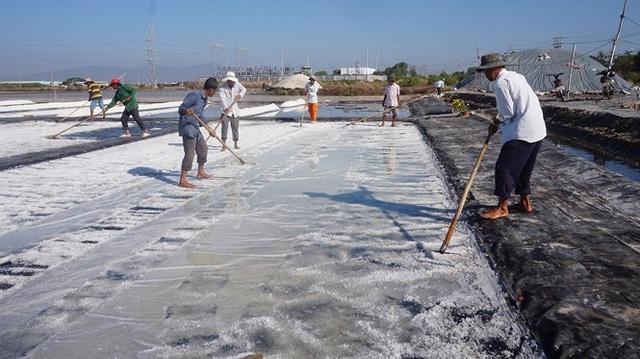 Cận cảnh nghề gieo nước biển đầu năm ở phương Nam - 3