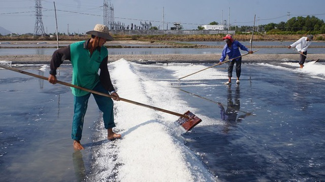 Cận cảnh nghề gieo nước biển đầu năm ở phương Nam - 6
