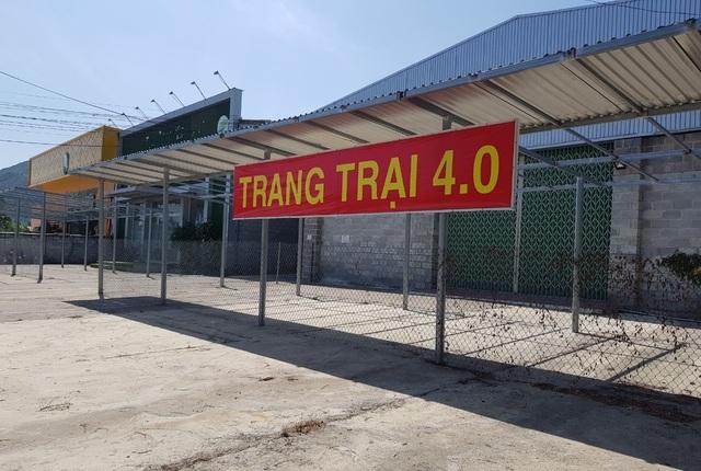 TP Nha Trang chốt thời điểm tháo dỡ showroom đón khách Trung Quốc - 1
