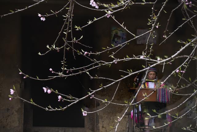 Mùa xuân may áo mới - 2