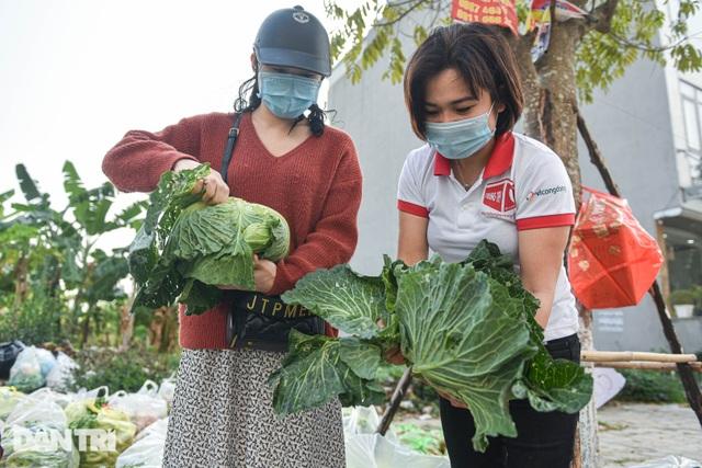 Người Hà Nội trả gấp 5, 10 lần để mua nông sản Hải Dương - 3