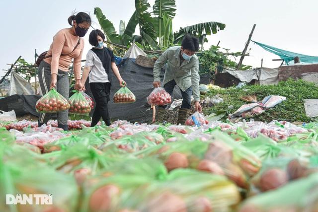 Người Hà Nội trả gấp 5, 10 lần để mua nông sản Hải Dương - 5