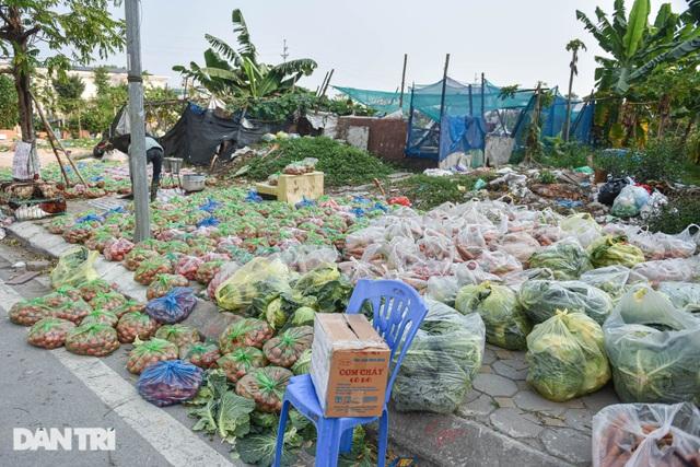 Người Hà Nội trả gấp 5, 10 lần để mua nông sản Hải Dương - 9