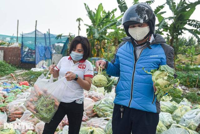Người Hà Nội trả gấp 5, 10 lần để mua nông sản Hải Dương - 2