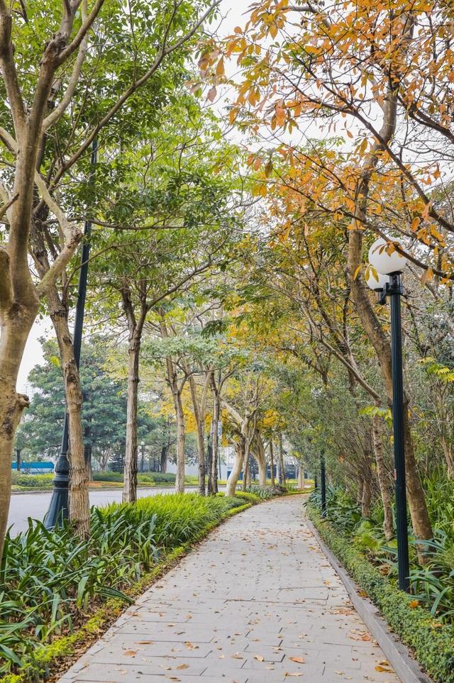 Ấn tượng sắc xuân tại Ciputra Hanoi - 2
