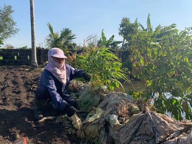 Nông dân vuốt nước mắt đổ hàng trăm tấn rau củ vì không ai mua - 5