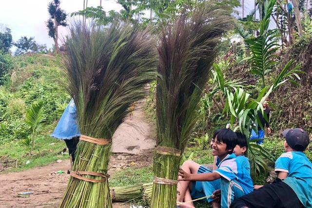 Quảng Ngãi: Lên non hái lộc của rừng - 4