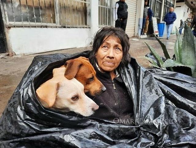 Bà lão sống trong túi rác 8 năm nhất định không chịu rời đi, biết lý do ai cũng rơi nước mắt - 1
