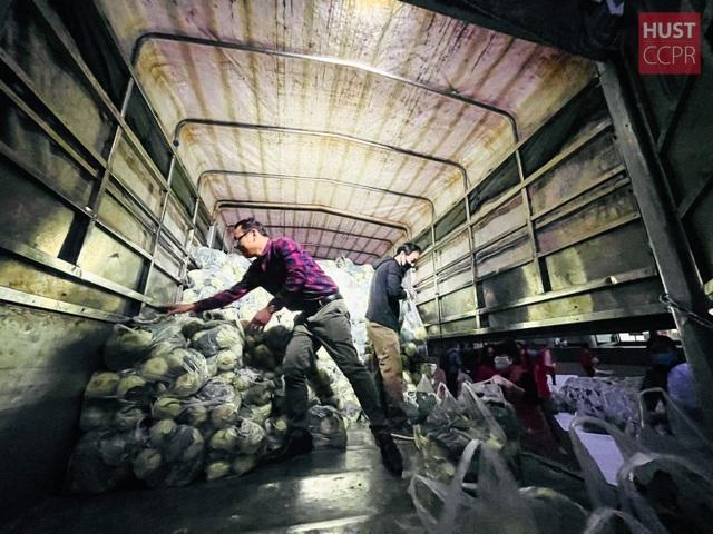 ĐH Bách khoa mua nông sản Hải Dương phát cho 2.000 cán bộ, giảng viên - 3