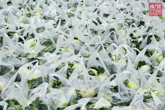ĐH Bách khoa mua nông sản Hải Dương phát cho 2.000 cán bộ, giảng viên - 14