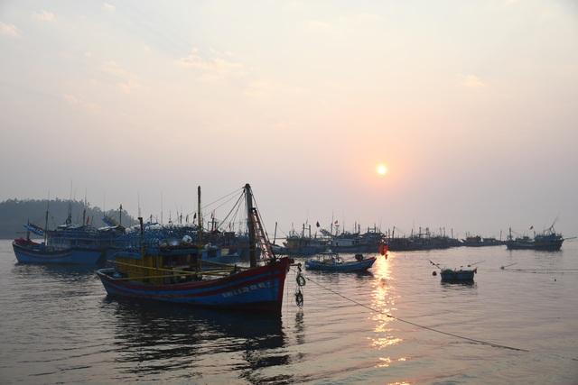 Ngư dân kiếm 3 triệu đồng chỉ sau một đêm ra khơi đánh cá cơm - 1