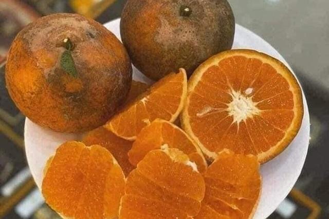 Cam sành Hà Giang siêu rẻ: 6 nghìn đồng/kg, mua cả yến vắt uống cả lít - 4