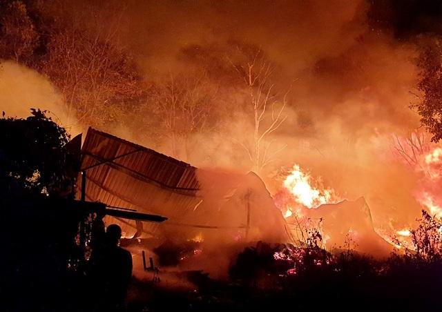 Vườn cây ăn trái rộng 10.000 m2 bị lửa thiêu rụi trong đêm - 1
