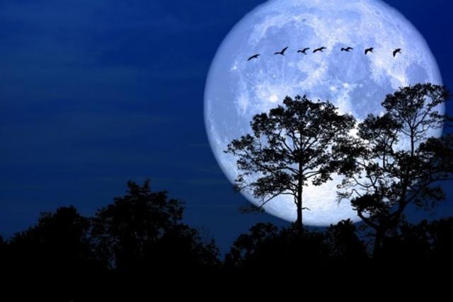 Kỳ ảo khoảnh khắc mặt trăng trở nên khổng lồ khi gần trái đất nhất - 2