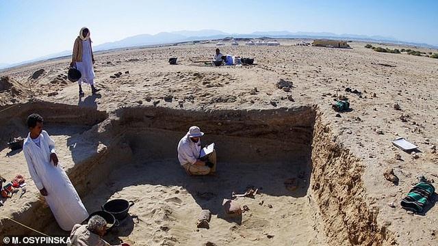 Tìm thấy nghĩa địa thú cưng 2.000 năm tuổi - 3