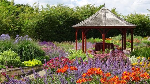 Cặp vợ chồng biến mảnh đất khô cằn thành vườn hoa vạn người mê sau 20 năm - 2