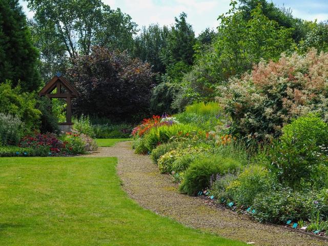 Cặp vợ chồng biến mảnh đất khô cằn thành vườn hoa vạn người mê sau 20 năm - 4