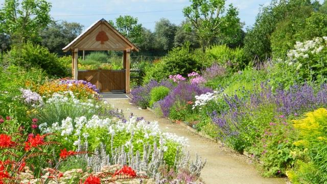 Cặp vợ chồng biến mảnh đất khô cằn thành vườn hoa vạn người mê sau 20 năm - 5