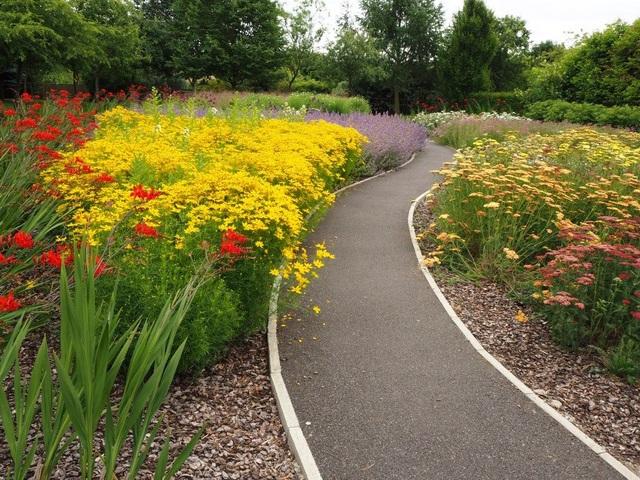 Cặp vợ chồng biến mảnh đất khô cằn thành vườn hoa vạn người mê sau 20 năm - 6