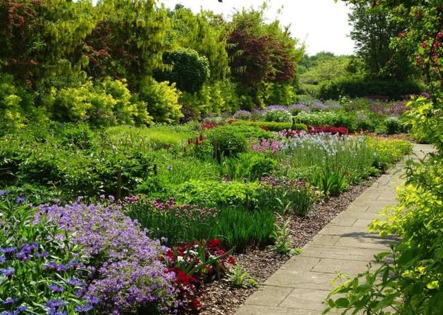 Cặp vợ chồng biến mảnh đất khô cằn thành vườn hoa vạn người mê sau 20 năm - 7