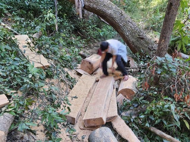 Khởi tố vụ cả đoàn xe độ chế rầm rập tiến vào phá nát rừng xanh Tây Nguyên - 1