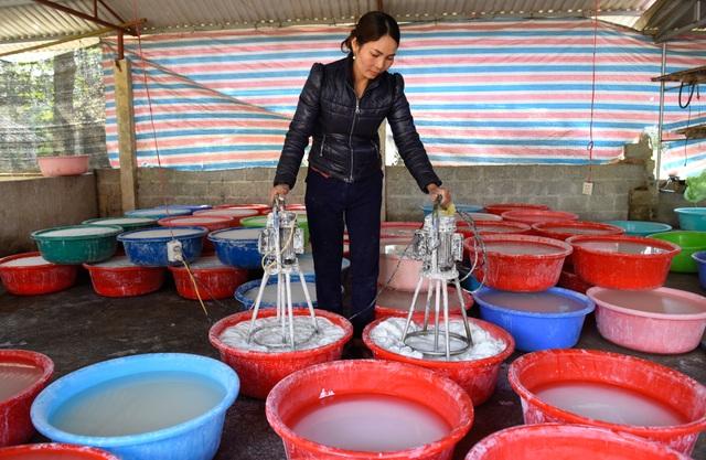 Hơn 100 hộ thoát nghèo nhờ cây sắn dây ở Thanh Hóa - 2