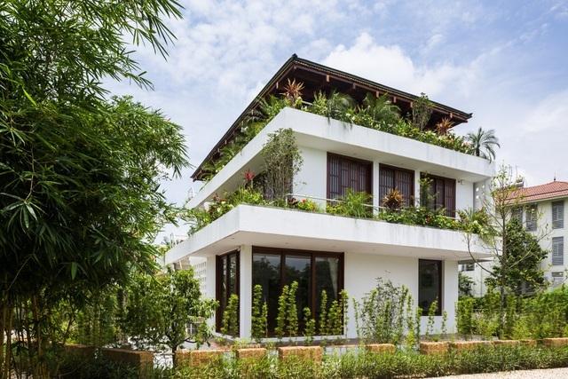3 căn nhà kiểu ruộng bậc thang ở Việt Nam, ngập sắc xanh ấn tượng - 8