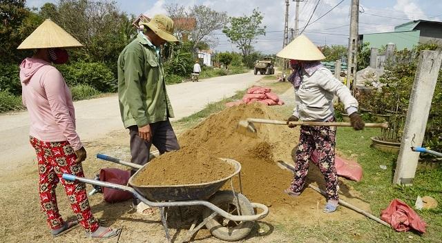 Người làm nghề trồng mai ở Bình Định tất bật tút tát cây sau Tết - 6