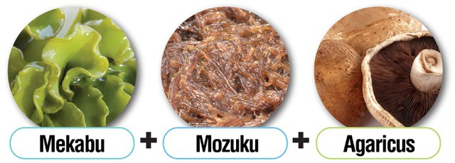 Món quà tuyệt vời từ tảo nâu Okinawa Mozuku đối với sức khỏe con người - 1