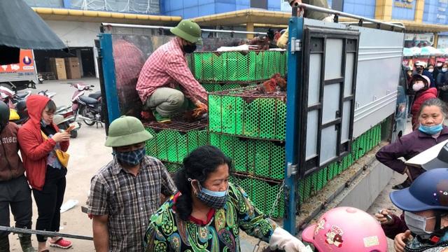 Người dân Hà Nội xếp hàng giải cứu gà đồi Hải Dương - 3