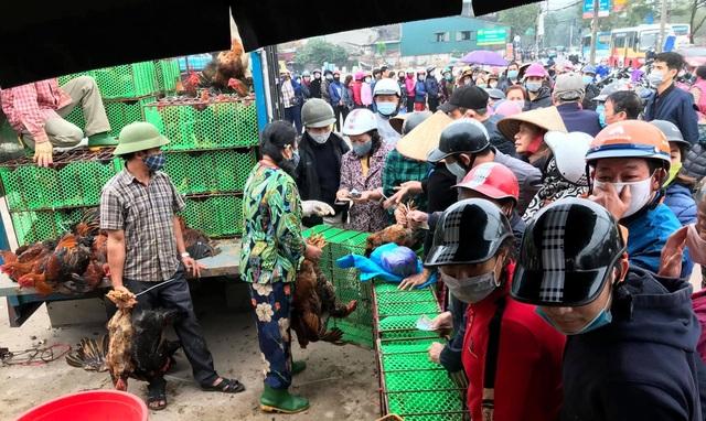 Người dân Hà Nội xếp hàng giải cứu gà đồi Hải Dương - 4