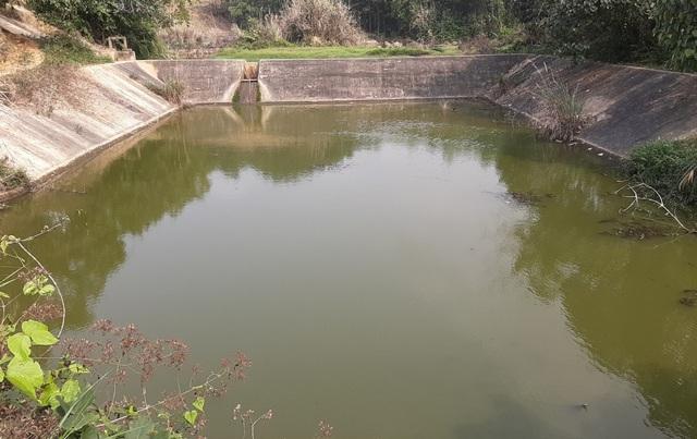 Dân khốn khổ vì trang trại lợn: Nước thối đến mức trâu còn không muốn tắm - 4