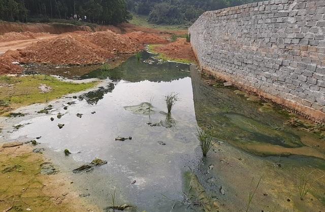 Dân khốn khổ vì trang trại lợn: Nước thối đến mức trâu còn không muốn tắm - 3