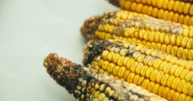 4 loại thực phẩm tăng nguy cơ ung thư gan: Có món người Việt rất thích - 3