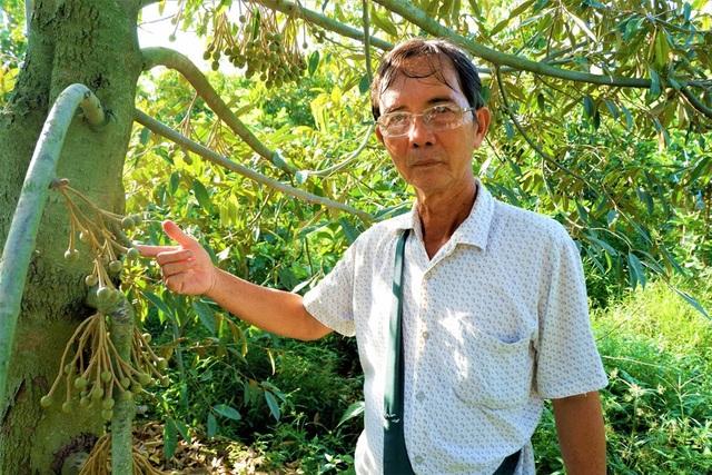 Lão nông Bến Tre thu nhập hơn nửa tỷ đồng/năm nhờ cây giống lạ - 1