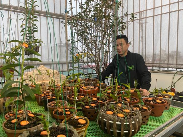 Nghệ nhân Nguyễn Văn Mạnh bật mí cách xử lý cây con, tưới nước cho cây lan - 1